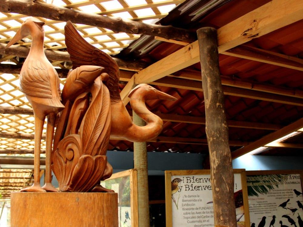 Museo Metropolitano de Aves